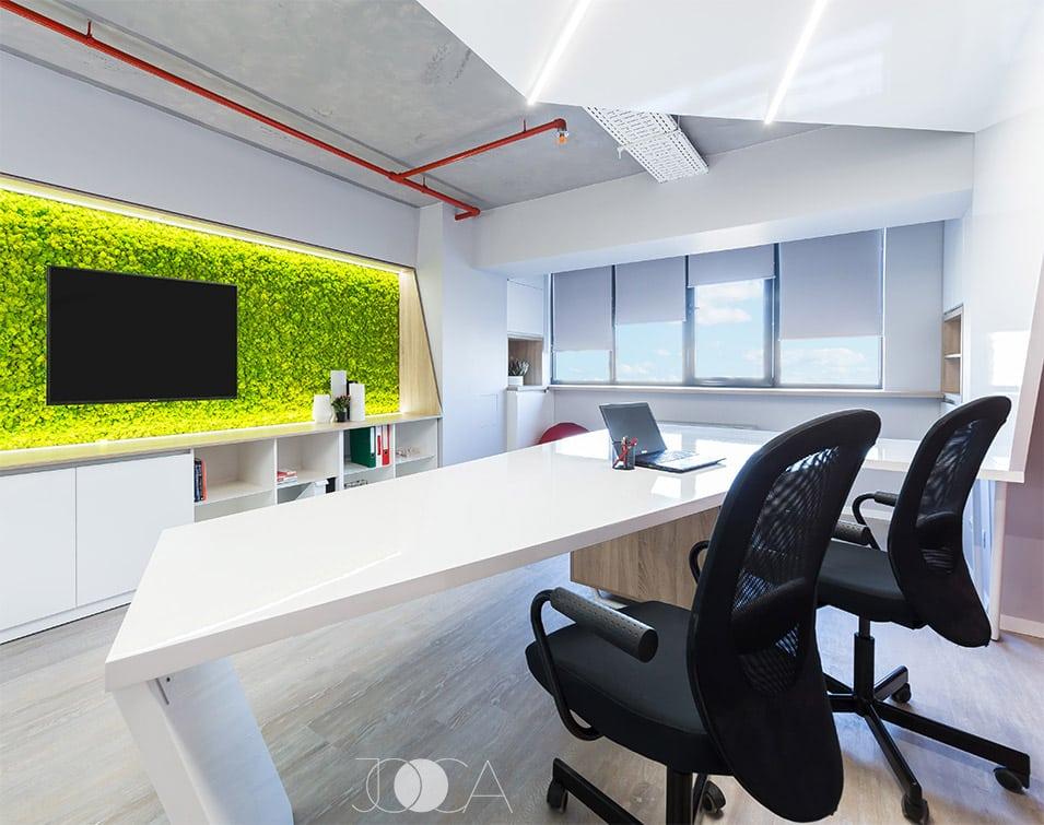 Peretele decorativ de licheni compleateaza amenajeara interioara a biroului printr-o pata de culoare