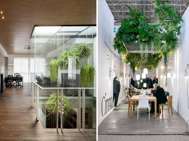 În spațiul de birouri din stânga, casa scării este transformată într-o veritabilă seră. Ferigile suspendate se bucură de lumina ce patrunde prin luminatorul clădirii și aduc puțin din mediul exterior în interiorul spațiului de lucru. În dreapta ai un exemplu de plafon verde, plin cu diverse specii de plante. Efectul obținut este de impact și poate marca o zonă importanta a spatiului tau. În cazul de față, zona de discuții din cadrul unui showroom. Surse foto: https://www.archilovers.com/projects/239313 și https://happyinteriorblog.com/maison-objet-2017-design-highlights/