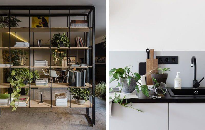 Pothos poate fi inclus într-o etajera cu rafturi deschise, alături de alte plante. Obții astfel un display drăguț, care poate funcționa și ca separator între două spații. El va arata bine și ca mic accent verde în bucătărie, de exemplu. Surse foto: https://www.archilovers.com/projects/240238 și http://cocolapinedesign.com/2018/03/13/propagating-golden-pothos-plant/