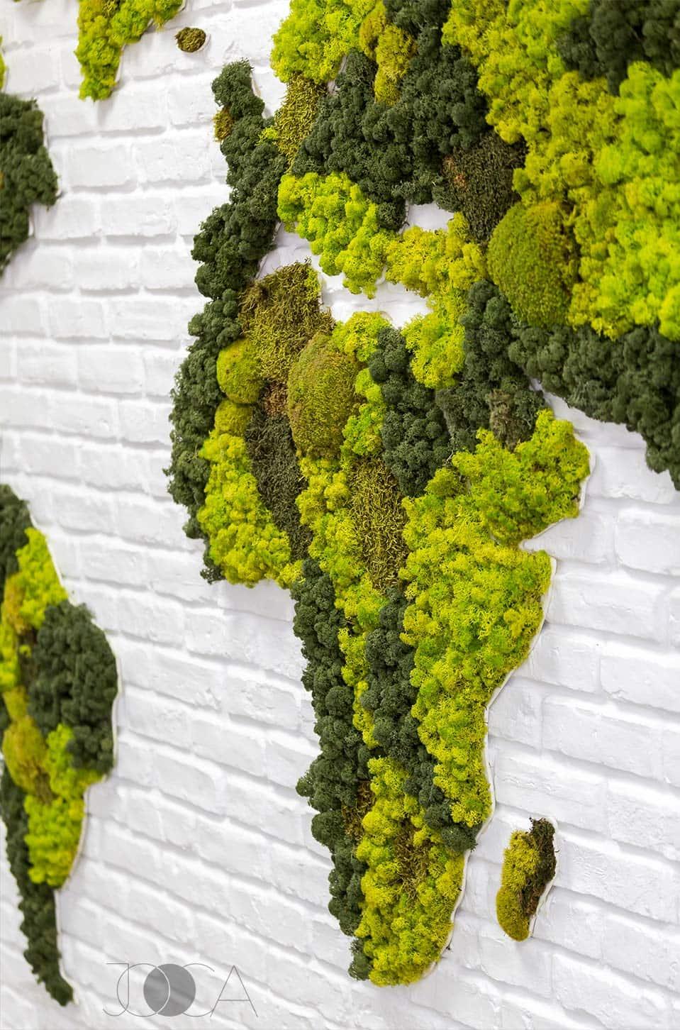 Harta lumii din licheni verzi este piesa centrala din zona birourilor open-space.