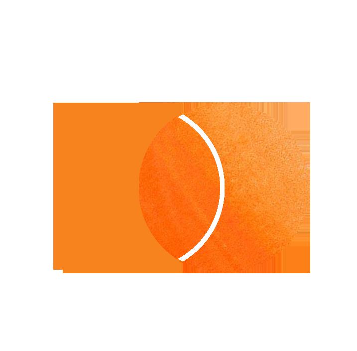 logograma mica
